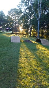 Losi jumping in the sunset