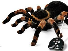 Radio Controlled Tarantula Spider